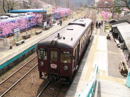 わたらせ渓谷鐵道トロッコ列車で滝を見たい!駐車場と駅弁はある?